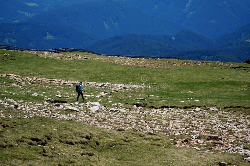 Groene weiden en mooi alp/Zuid-Tirol in Italië royalty-vrije stock afbeeldingen