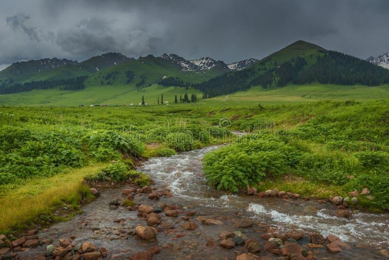 Groene weilanden en duidelijke stromen royalty-vrije stock fotografie