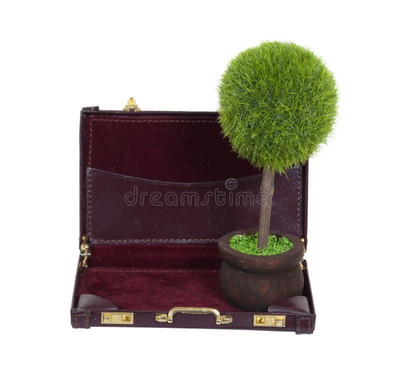 Groene Zaken stock afbeelding