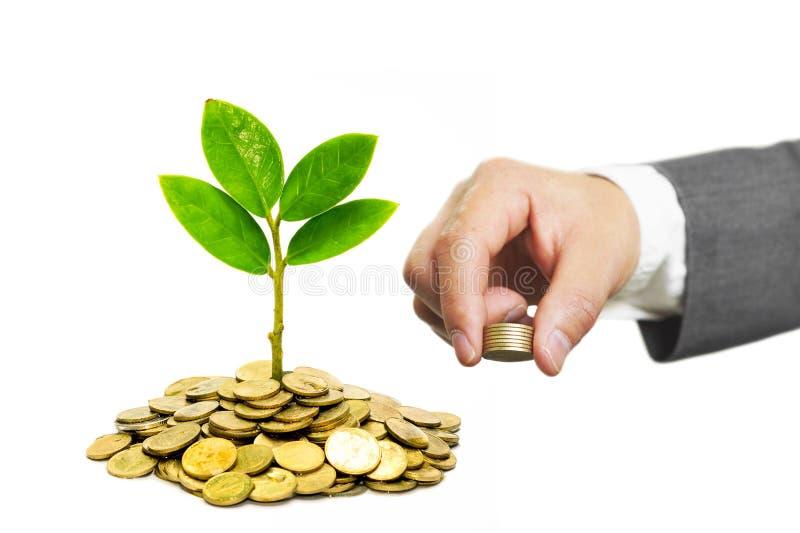 Groene zaken royalty-vrije stock foto