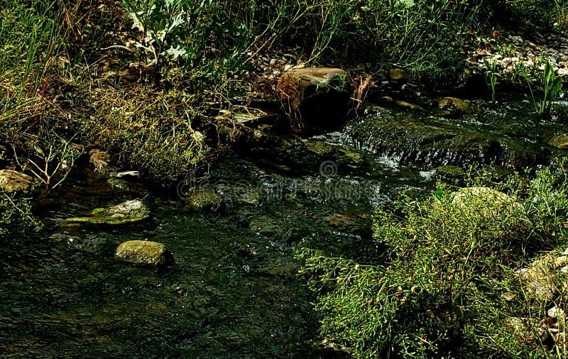Groenste rivieren royalty-vrije stock foto's