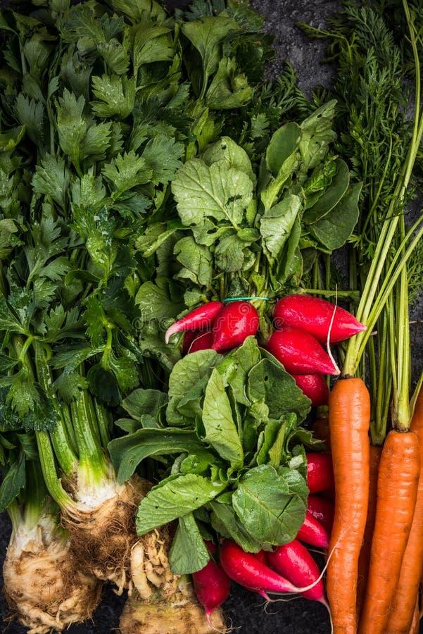 Groente van landbouwbedrijf de Verse Wortels, Hoogste Weergeven, Natuurvoeding royalty-vrije stock foto