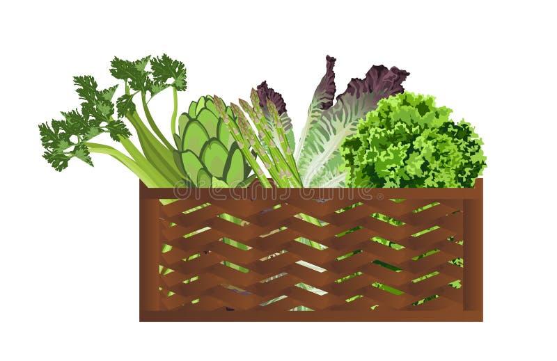 Groenten in de mand vector illustratie