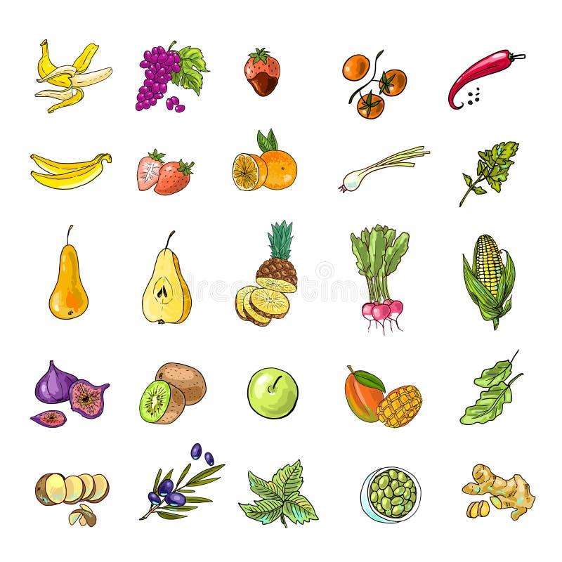 Groenten en Vruchten vector illustratie