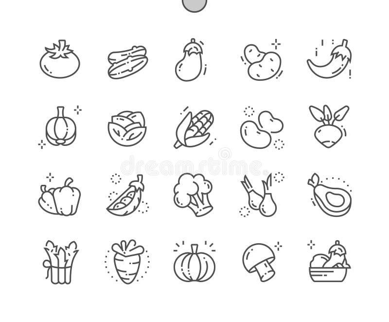Groenten goed-Bewerkte Pictogrammen 30 van de Pixel Perfecte Vector Dunne Lijn 2x Net voor Webgrafiek en Apps vector illustratie