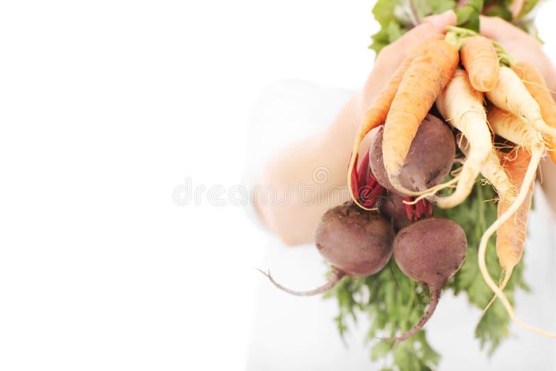 Groenten over witte achtergrond stock afbeelding