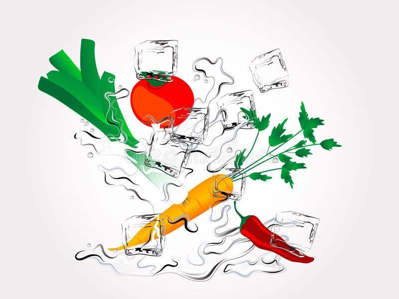 Groenten in plons vector illustratie