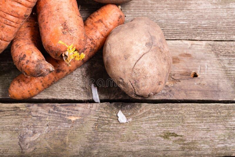 Groenten, ruwe wortelen één aardappel, tegen van grijze raad royalty-vrije stock afbeelding