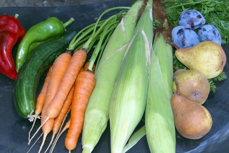 Groentendruiven stock afbeeldingen