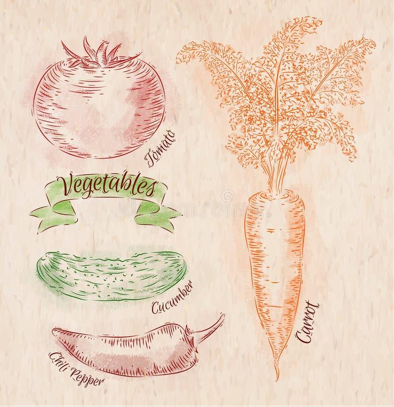 Groentenwortel, tomaat, Spaanse peperpeper, komkommer stock illustratie