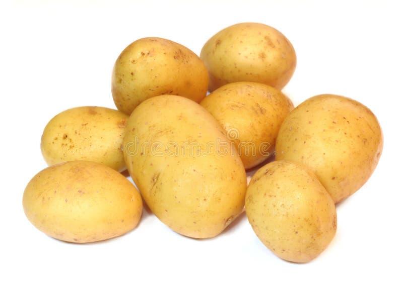 Groep aardappels op een witte achtergrond wordt geïsoleerd die stock fotografie