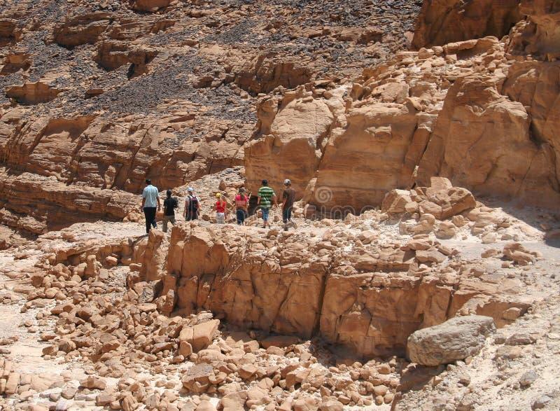 Groep de toeristen stock foto's