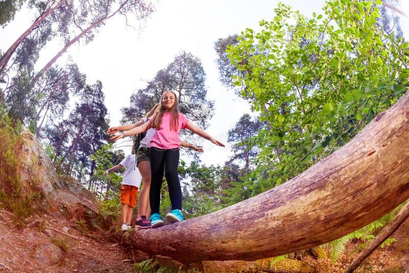 Groep die jonge geitjes over het lange grote houten logboek lopen royalty-vrije stock afbeeldingen