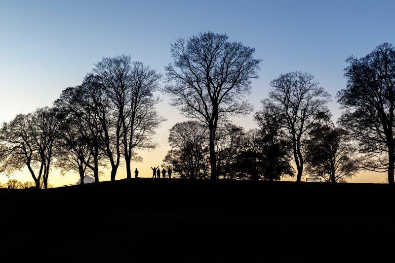 Groep die mensen van zonsondergang genieten stock foto's
