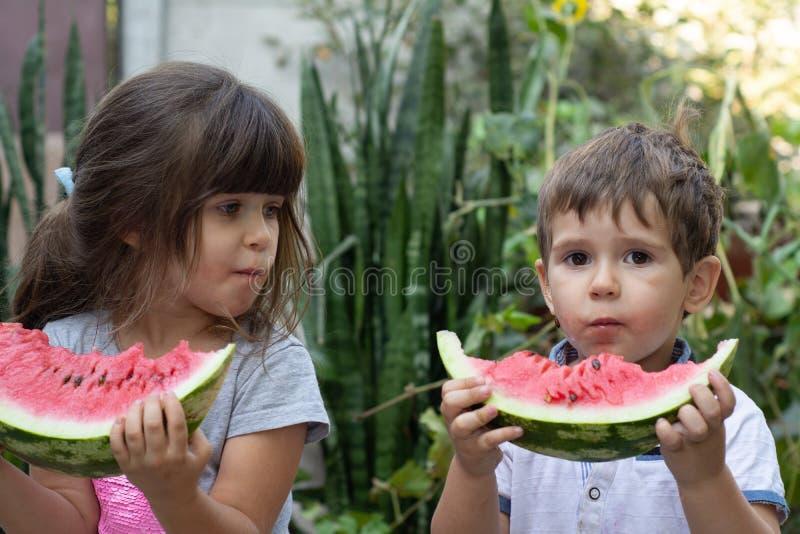 Groep gelukkige jonge geitjes die watermeloen op gras in de zomerpark eten Kinderen met watermeloen stock foto
