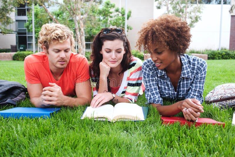 Groep gelukkige studenten in gras stock afbeeldingen