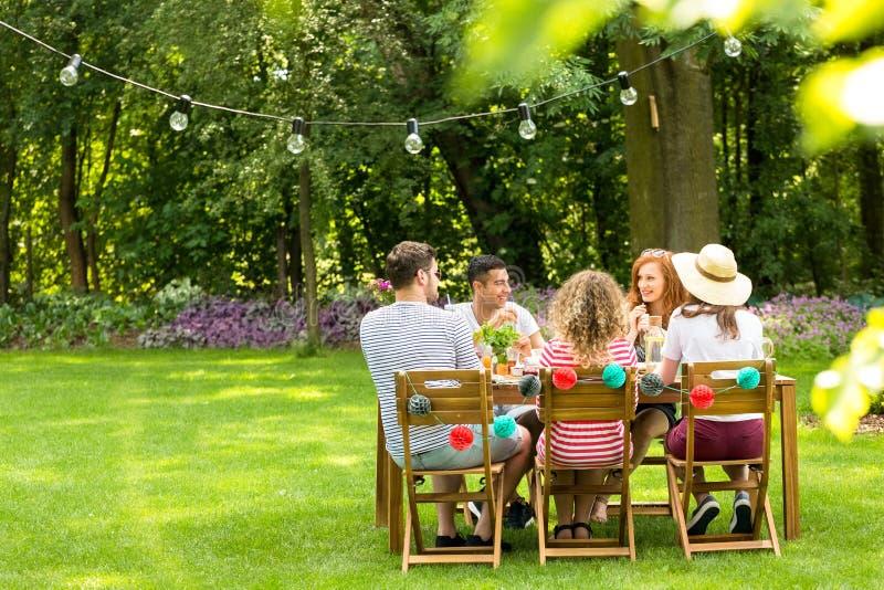 Groep gelukkige vrienden die van vergadering in de tuin genieten tijdens spr stock afbeelding