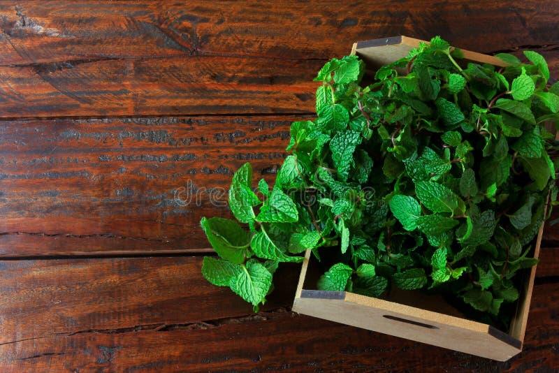 Groep groene organische verse munt in mand over rustiek houten bureau Aromatische pepermunt met geneeskrachtig en culinair gebrui royalty-vrije stock foto's