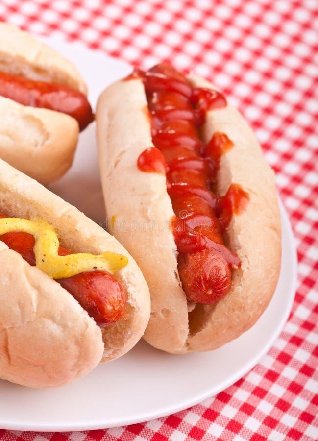 Download Groep hotdogs op een plaat stock afbeelding. Afbeelding bestaande uit geroosterd - 10780661