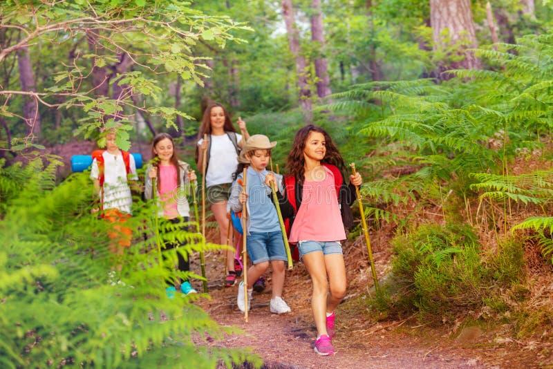 Groep jonge geitjes die en in het bos lopen wandelen royalty-vrije stock afbeelding