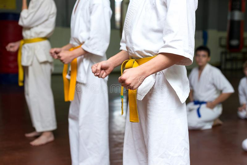 Groep jonge geitjes op een vechtsporten opleiding stock foto