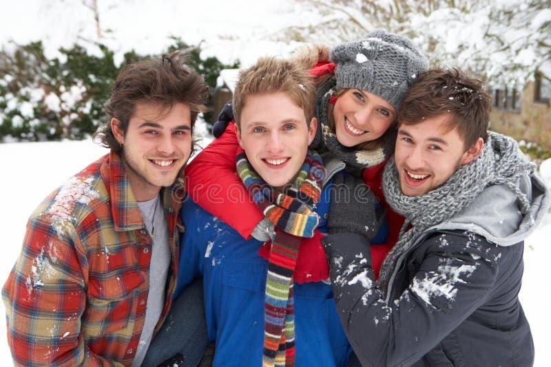 Groep jonge volwassenen in sneeuw royalty-vrije stock foto's