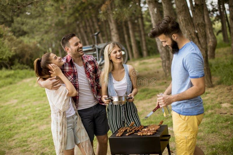 Groep jongeren die barbecue van partij in de aard genieten stock foto