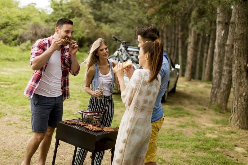 Groep jongeren die barbecue van partij in de aard genieten stock foto's