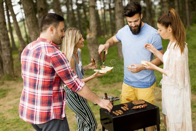 Groep jongeren die barbecue van partij in de aard genieten royalty-vrije stock afbeeldingen