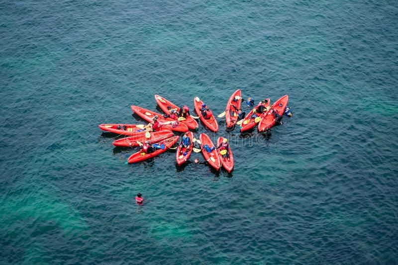 Groep Kajaks in vorming in de oceaan royalty-vrije stock foto's