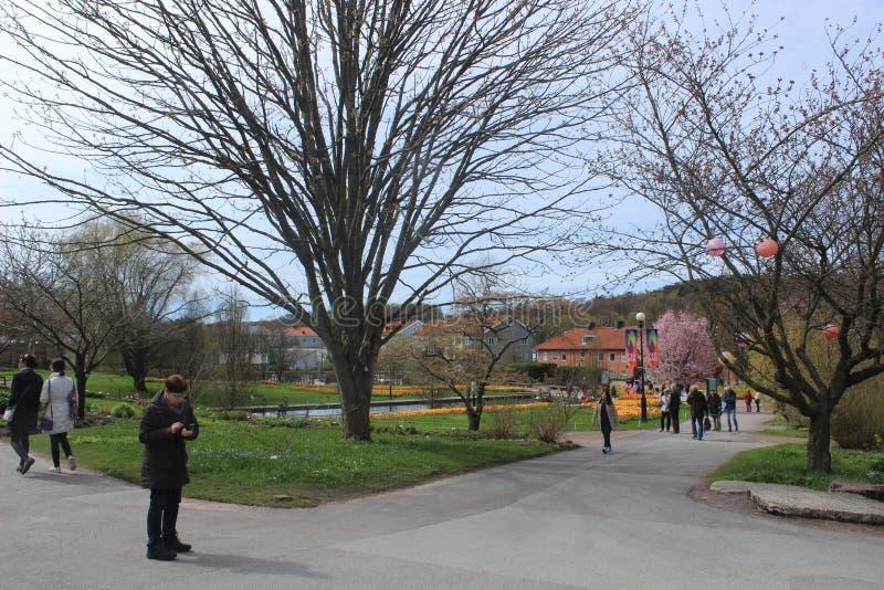 Groep mensen in een park, de botanische tuin van Gothenburg, Zweden royalty-vrije stock foto