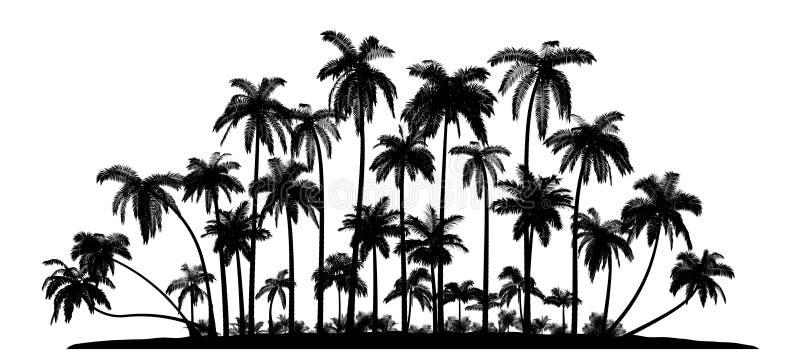 Groep palmen Vectorsilhouetten stock illustratie