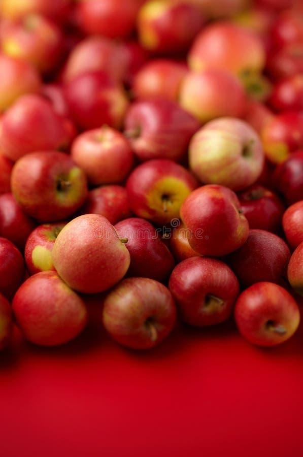 Groep rode appelen stock afbeeldingen
