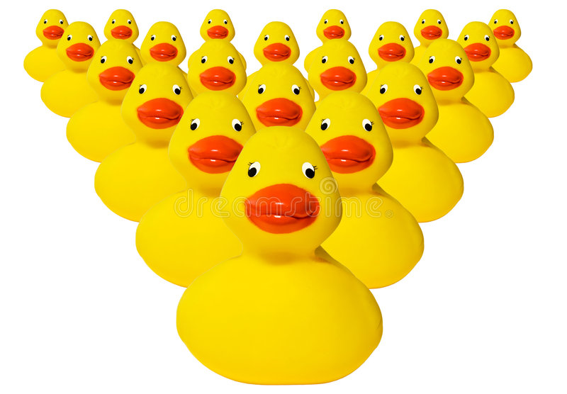 Groep rubber duckies stock foto