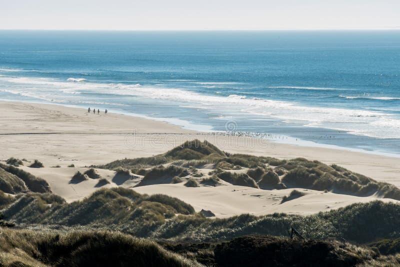 Groep ruiters op hun paarden en een troep van vogels op een strand stock afbeelding