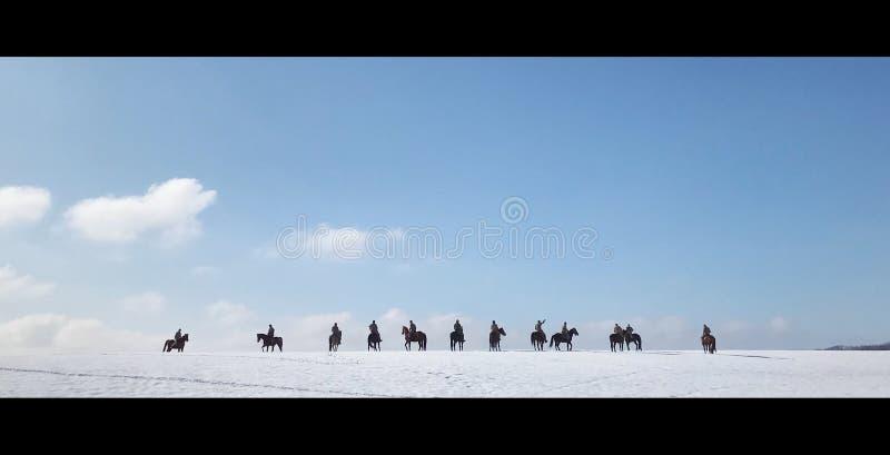 Groep ruiters op zwarte paarden royalty-vrije stock foto