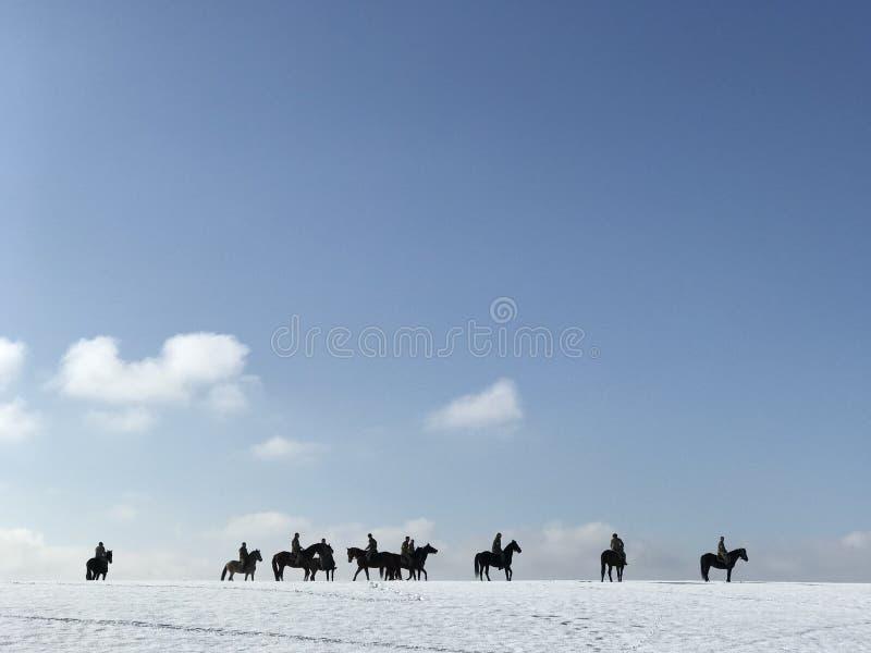 Groep ruiters op zwarte paarden stock foto