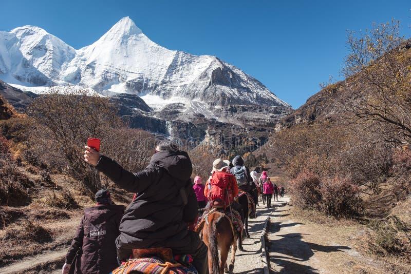 Groep toeristen die paard berijden in heilige vallei met Yangmaiyong-berg bij het nationale park van Yading stock foto's