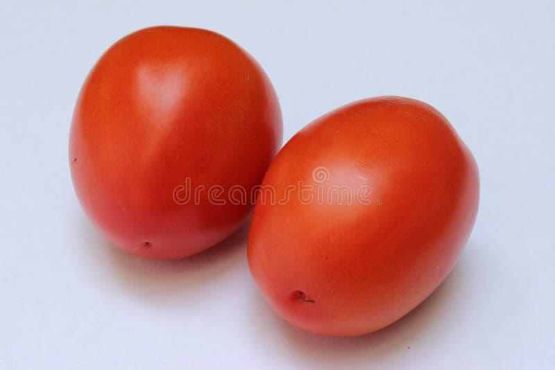 Groep tomaten voor Italiaanse sausen stock afbeelding