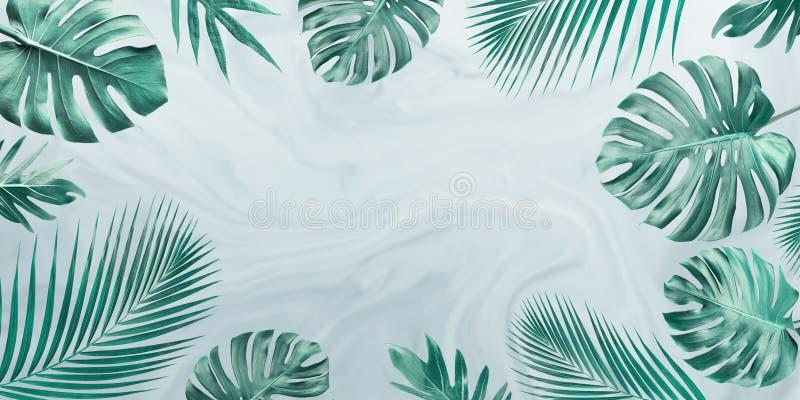 Groep tropische bladeren op marmeren achtergrond De ruimte van het exemplaar Aard en de Zomerconcept royalty-vrije stock afbeelding