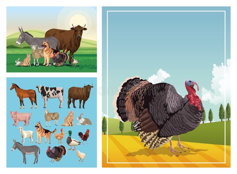 Groep van dierenkwekerijen in het kamp vector illustratie