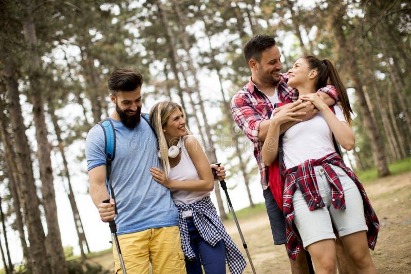 Groep van vier vrienden die samen door een bos wandelen royalty-vrije stock foto's