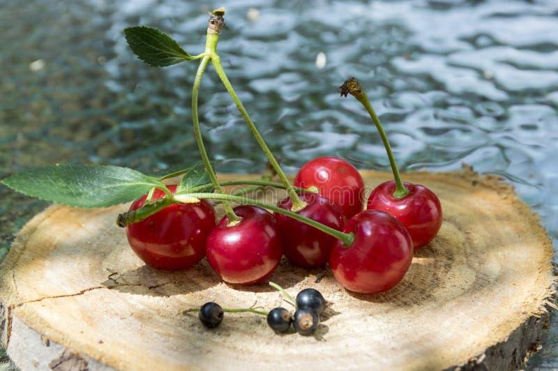 Groep vers gerijpt fruit op houten stootkussen, rode morellen en zwarte bes royalty-vrije stock foto's