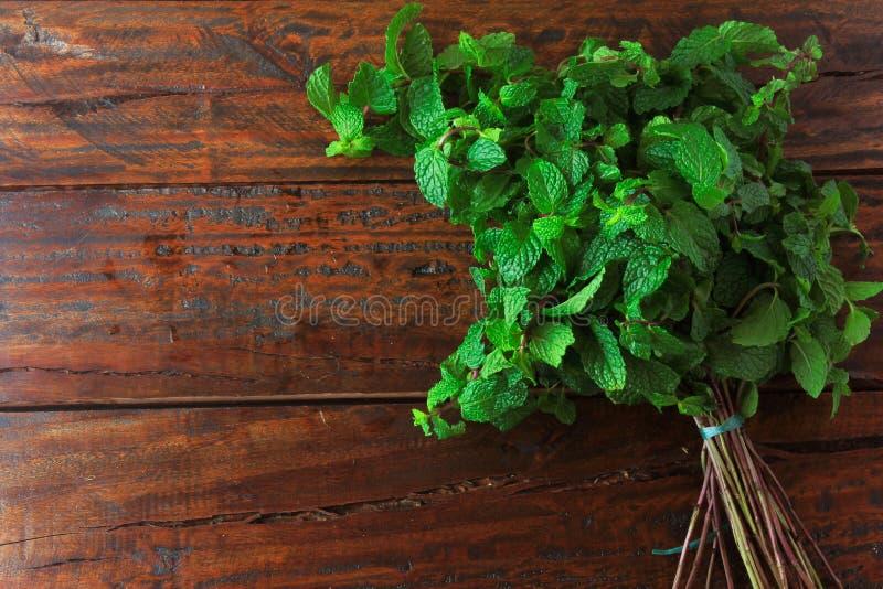 Groep verse organische groene munt op rustieke houten lijst Aromatische pepermunt met geneeskrachtig en culinair gebruik stock foto's