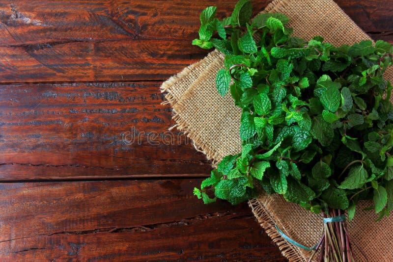 Groep verse organische groene munt op rustieke houten lijst Aromatische pepermunt met geneeskrachtig en culinair gebruik royalty-vrije stock foto's