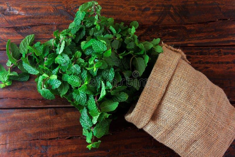 Groep verse organische groene munt in rustieke stoffenzak op rustieke houten lijst Aromatische pepermunt met geneeskrachtig en cu stock afbeelding