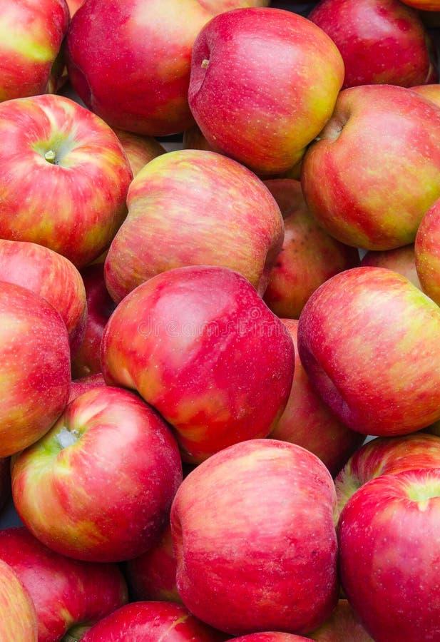 Groep verse rode appelen stock afbeelding