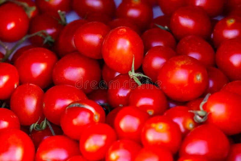 Groep verse tomaten stock foto's