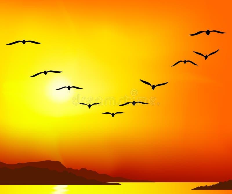 Groep vogels royalty-vrije illustratie