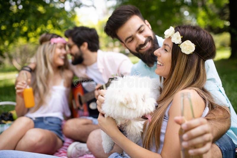 Groep vrienden die grote tijd op picknick in aard hebben royalty-vrije stock afbeelding